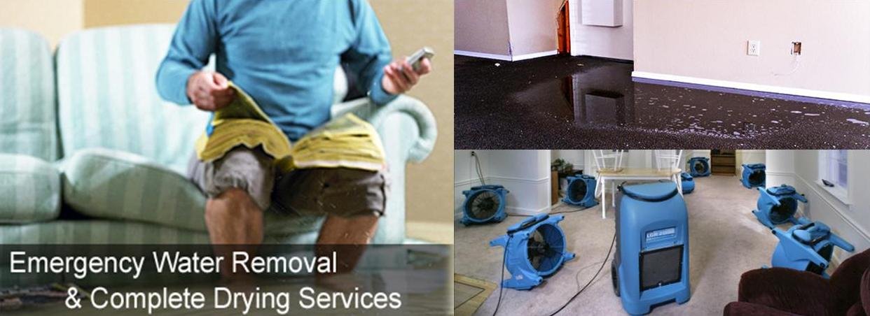 49 95 Carpet Cleaning Special Myrtle Beach Sc